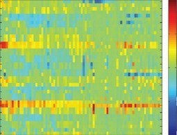 Big data meets genomic profiling to improve clinical trials for cancer drugs | Big Data | Scoop.it
