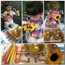 Sunflowers in Brainy Montessori   Nursery School Park Slope   Scoop.it