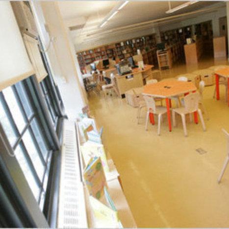 School Librarians: Assessing the Unassessable   K-12 School Libraries   Scoop.it