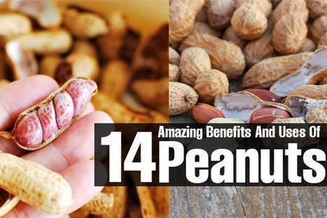 14 Amazing Benefits And Uses Of Peanuts | Nutrition Guide | Scoop.it