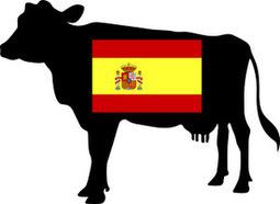 Parler le français comme une vache espagnole - French Idiom   French and France   Scoop.it