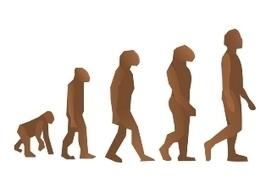 La Crónica de Hoy | Congreso mundial abordará importancia de la evolución para desarrollo humano | Darwin | Scoop.it