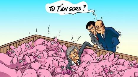 Marché du porc: reprise dans l'incertitude - Ouest France | Agriculture en Pays de la Loire | Scoop.it