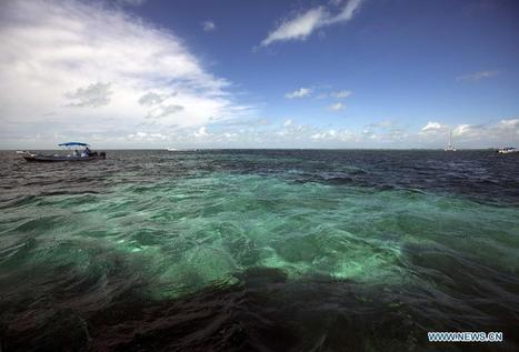 World heritage: Belize Barrier Reef - Xinhua | Belize | Scoop.it