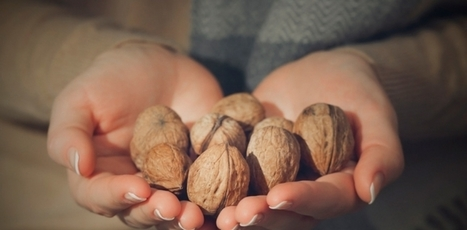 Comer nueces favorece un envejecimiento saludable | I didn't know it was impossible.. and I did it :-) - No sabia que era imposible.. y lo hice :-) | Scoop.it