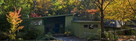 Dunwoody Nature Center announces Thanksgiving activities for kids   Dunwoody, Sandy Springs and Brookhaven   Scoop.it