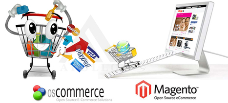 Hire Magento Expert from India at low cost | Hire Magento Developer | Scoop.it