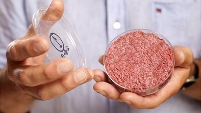 Lab-grown burger eaten in London | leapmind | Scoop.it