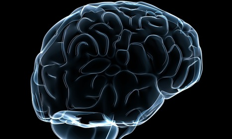 Scientists threaten to boycott Human Brain Project | healthcare technology | Scoop.it