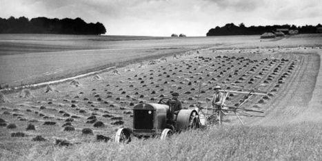 Les paysans survivront  ! | Ca m'interpelle... | Scoop.it