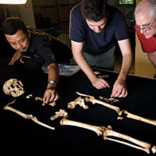 "Rethinking ""Hobbits"": What They Mean for Human Evolution: Scientific American 