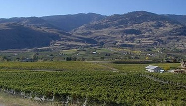 Wineries Bid for B.C.'s First Subappellation | Autour du vin | Scoop.it