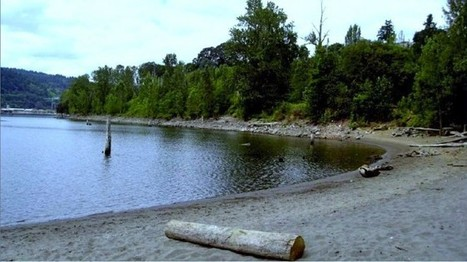 Willamette Cove | PDX water maps and messes | Scoop.it