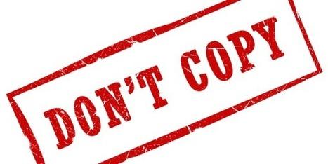 5 Dangers of Online Resume Samples   CAREEREALISM   Business Coaching   Scoop.it