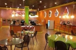 yogurt business | yogurt business | Scoop.it