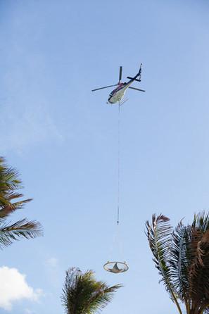 Bahamas : une sixième raie manta remise en liberté   Rays' world - Le monde des raies   Scoop.it