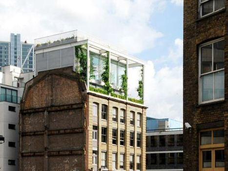 Roof Garden Apartment by Tonkin Liu   Garden Designer   Scoop.it