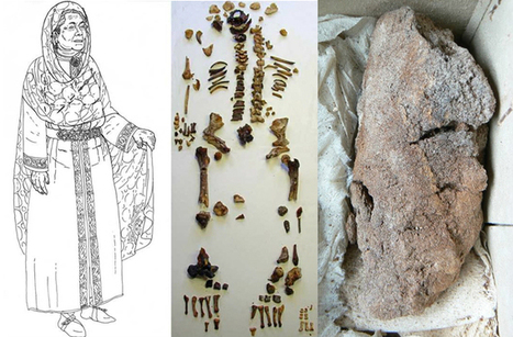 Mystery of Mummified Lung Solved : DNews | News in Conservation | Scoop.it