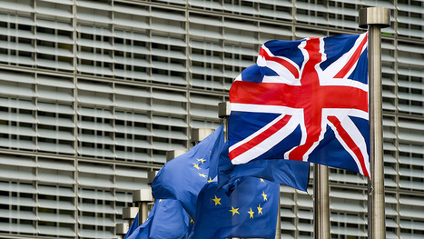 Young farmers back Brexit - Farmers Weekly | Agrarforschung | Scoop.it