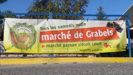 Du champ à l'assiette : Enquête sur la vente directe, sur France 5. - LeBlogTvNews | Actu Agri Bio | Scoop.it