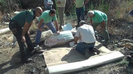 Un incendio en una finca de La Rinconada descubre un conjunto de valor arqueológico | LVDVS CHIRONIS 3.0 | Scoop.it
