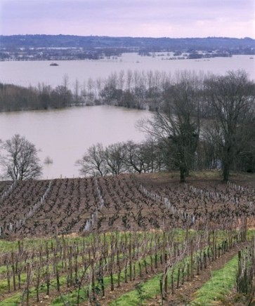 French floods: Much of southwest declared disaster zone | Vitabella Wine Daily Gossip | Scoop.it