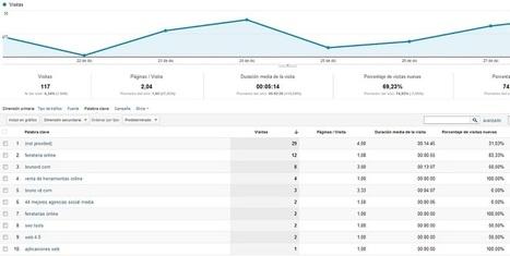 Estudio de Analítica Web y Conversión recomendado para blogs   BrunoVD.com   working with Wordpress   Scoop.it