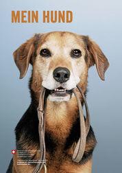 Neue Broschüre rund um die Hundehaltung | ʕ·͡ᴥ·ʔ Welpenkauf Informationen | Scoop.it