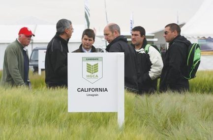 Cereals 2013: Technology to drive arable success - 6/2/2013 - Farmers Weekly | Articles mentioning John Innes Centre | Scoop.it