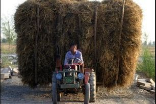 China's deserts are expanding at an alarming rate. So it's fighting back, with straw mats | Sustain Our Earth | Scoop.it