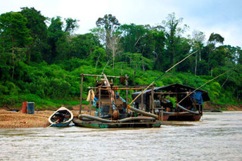 Stanford grad student sees firsthand illegal gold mines in Peru and their threat to the rain forest | Environmental news from Peru | Scoop.it