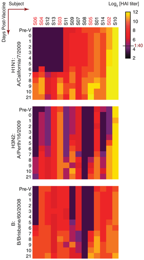 High-Resolution Temporal Response Patterns to Influenza Vaccine Reveal a Distinct Human Plasma Cell Gene Signature : Nature Publishing Group | Viruses and Bioinformatics from Virology.uvic.ca | Scoop.it