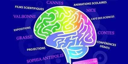 Semaine du Cerveau : cette mémoire qui fait toute notre vie - Webtimemedias.com | neuroscience- éducation | Scoop.it
