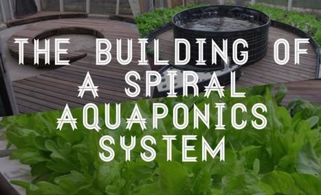 The building of a $1,200 spiral aquaponics system. | Over Grow The System | Aquaponics~Aquaculture~Fish~Food | Scoop.it