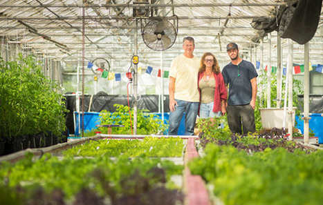 Goleta farm fishes for sustainability | Aquaponics in Action | Scoop.it