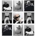 Choupette Lagerfeld signe une collection pour Shu Uemura - Toutelaculture | Maison Chanel | Scoop.it
