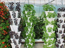 Commercial Connection: Hydroponic Workshops for Small Farms and Homeowners | Vertical Farm - Food Factory | Scoop.it