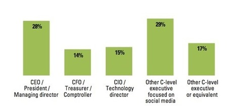 Research: The View Of Social Business From The C-Suite | BI Revolution | Scoop.it