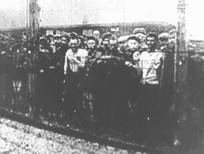 Lublin/Majdanek Concentration Camp: Conditions | Majdanek concentration camp | Scoop.it