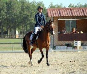 Charly-sur-Marne / Championnats de France jeunes poneys Six belles mentions | L'Union | Cheval et sport | Scoop.it