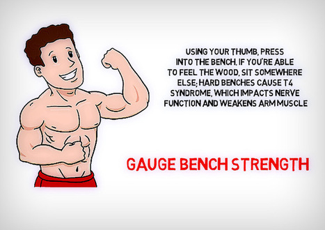Gauge Bench Strength | Quotes Abouth Health | Scoop.it