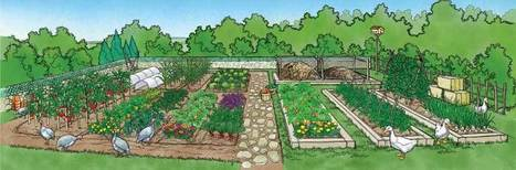 82 Sustainable Gardening Tips | Permaculture, Homesteading & Green Technology | Scoop.it