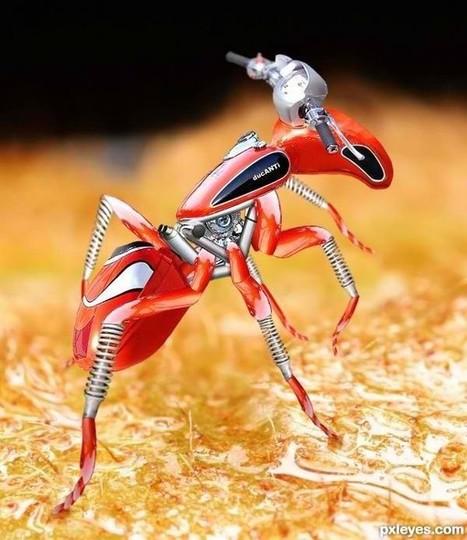 """DucANTI"" - Ducati Community - Michael Mifsud  - Ducati inspired artwork | Ductalk Ducati News | Scoop.it"