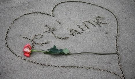 Déclaration d'amour à mon troll | blog-territorial & communication publique | Scoop.it