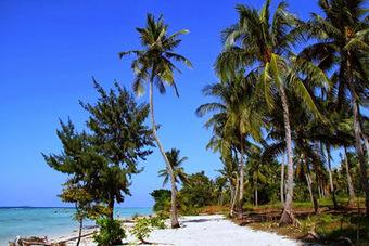 Rekomendasi Agen Wisata Pulau Tidung Yang Terbaik   Paket dan Wisata Pulau Tidung   Scoop.it