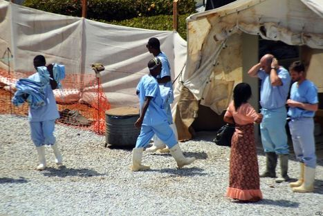 WHO: Ebola Death Toll Tops 120 | Virology News | Scoop.it