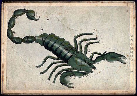 Loving a Scorpio: Who's Compatible with the Alchemist? | Things I Want to Remember | Scoop.it