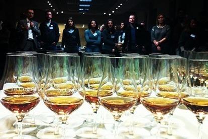 Le 9ème Vinocamp en terre de Cognac via @AlexMeunier79 | Terre de Vins | Vin, blogs, réseaux sociaux, partage, communauté Vinocamp France | Scoop.it