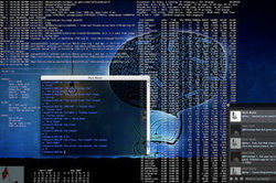 Identifiant numérique unique Idenum: NKM en a rêvé, Fleur Pellerin l'a fait | Identity management | Scoop.it