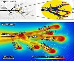 3-D models of electrical streamers | Sustain Our Earth | Scoop.it